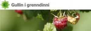Gullin_i_grendinni