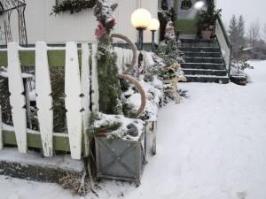 Jólaglugginn 19.des. - Sjafnarblóm og fjallakona Selfossi